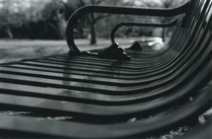Ride the Bench by surf-4-life
