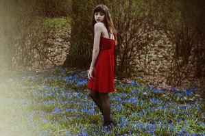 Red dress by haania