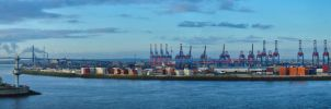 Panorama view Hamburg Port by Bull04