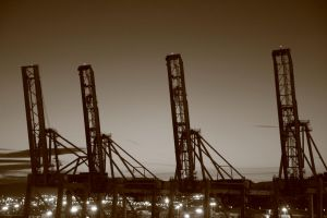 Cranes at sunset by LPeregrinus
