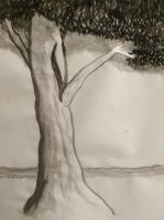 Drawing: Chinese Painted Tree by sarahsmiles916