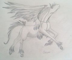 Pegasus by Chequer