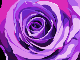 Purple rose by elviraNL
