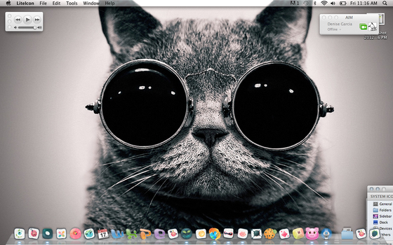 Old Kitty Desktop by Denise-Photography