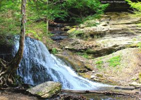 Spring at Hells Hollow by GlassHouse-1