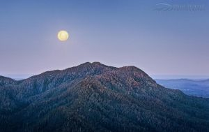 Dorrigo Supermoon by DrewHopper