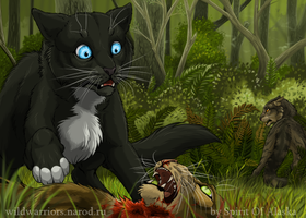 Tigerclaw's Fury. Ch. VI by Spirit-Of-Alaska