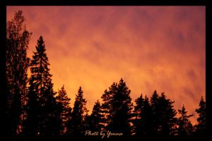 Sky of Orange by yenna-photo