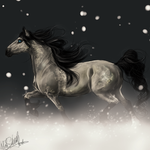 Gift.:snow elegance:. by WhiteSpiritWolf