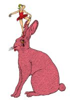 Follow the pink rabbit and the ballerina design by Haluzz