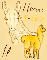 llamas 4-ever by MyMyMellow