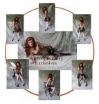 Burlesque Fairy Exclusives by mizzd-stock
