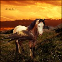 Asunder by Unknownandfrantic