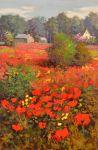 Country Poppies by rooze23