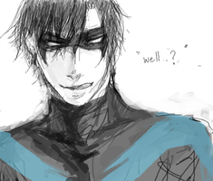Nightwing by seki22