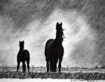 With the Storm by ApplesCarrotsnGrain