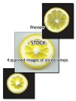 - STOCK - sliced lemon by Von-Chan