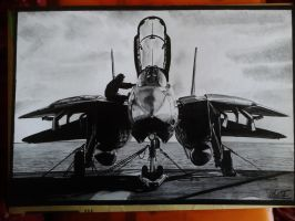 Grumman F-14D Tomcat drawing by alainmi
