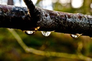 Drops by the-kayaker