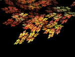 Falling Leaves - AWC 10 Linear by cloudlakes