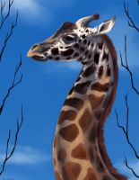 Animal Portrait - Giraffe by DanjiIsthmus