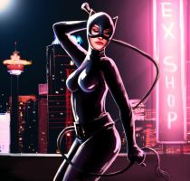 Catwoman by endave