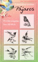 Pajaros Ps Brushes by mae-b