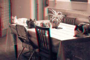Table Cats 3-D conversion by MVRamsey