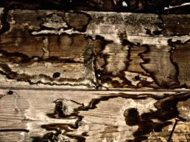 stained wood by Mind-Illusi0nZ-Stock