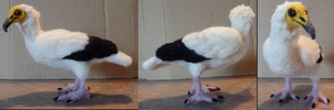 Custom Needle Felted Egyptian Vulture by DancingVulture