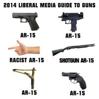AR15 according to liberals by CrimsonFALKE