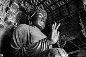 Daibutsu by WhiteBook