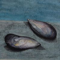 two mussels by imoart