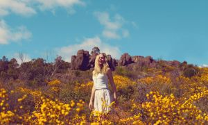 Sunny Days by fae-photography