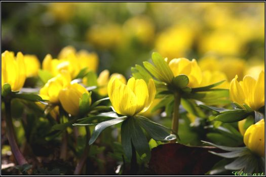 Spring Moments 03 by Clu-art