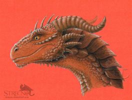 Copper-Colored Dragon Head by Strecno