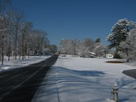 Icy Roads by SmellyCat710
