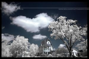 Victorian Infrared by GothicAmethyst