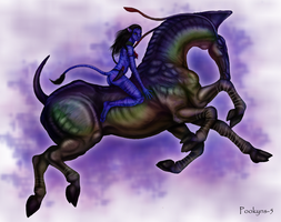 Riding Pali by pookyhorse