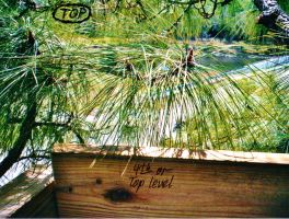 Our Treehouse Built by My Husband {Photo 54} by Empress-XZarrethTKon