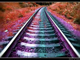 The Psylocibe railway by anothervision