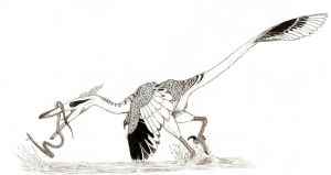 Heron Raptor by pilsator