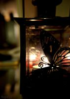 Butterfly Silhouette by MeganCeri
