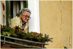Just an old Hungarian lady by Gil-Levy