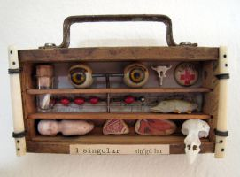 Reliquary Assemblage by bugatha1