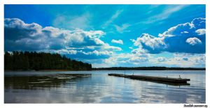 Swedish summer by Diego-Suarez