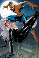 Blackcat_Spider man by MARCIOABREU7
