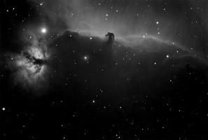 The Horse Head Nebula by mscoelho