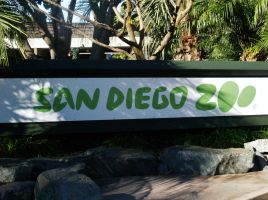 San Diego Zoo by TheInfernalDemon