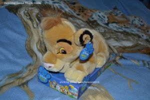 Rare lying anmial Friends Simba - TLK by MoondragonEismond